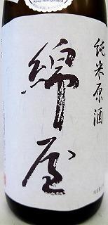 b491.jpg